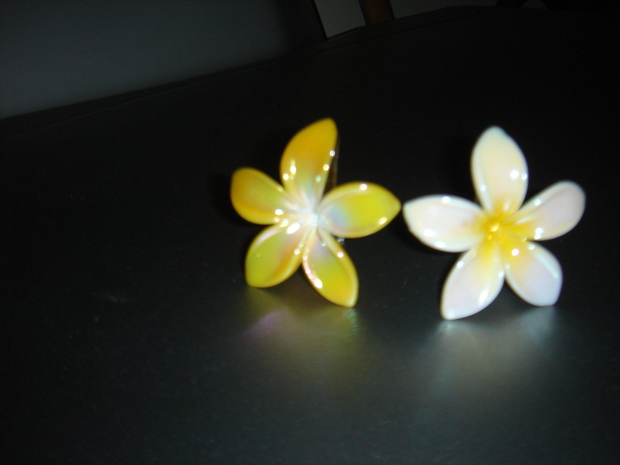 fleurscheveux.jpg
